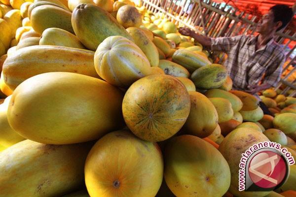 Kampung Gabus Bekasi pasok timun suri Jabar