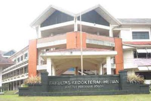 FKH IPB Luluskan 6.130 Dokter Hewan