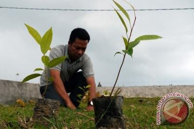 Tanam 1.000 Pohon Bogor Cegah Longsor
