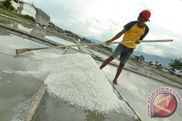 Harga garam lokal di Karawang merosot tajam, mengapa?