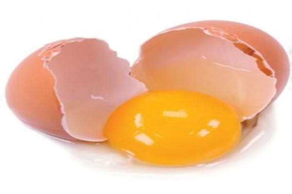 Kekhawatiran Jerman Pada Belgia Soal Telur Tercemar