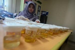 PNS Wajib Tes Urine Di Kabupaten Bogor
