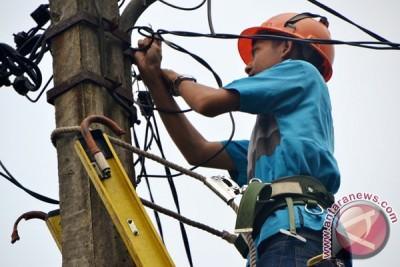 Atasi Gangguan, PLN Area Bogor Turunkan Tim Investigasi Jaringan