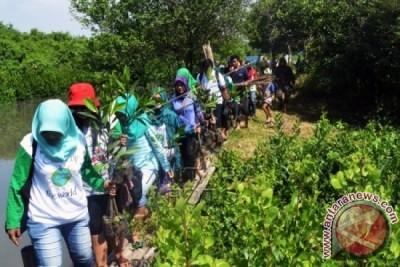 Jaga Hutan Bakau Untuk Antisipasi Bencana