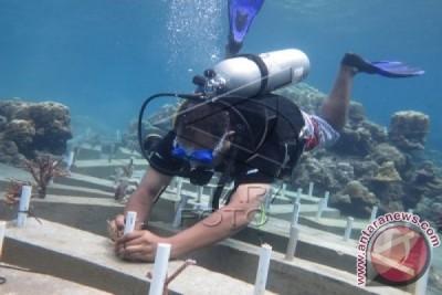 Indonesia Kesulitan Mencari Ilmuwan Muda Ahli Bidang Laut Dalam