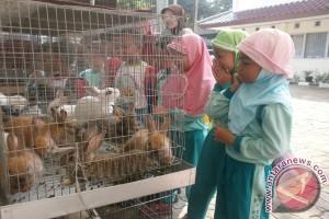 Masyarakat Karawang Serahkan Kelinci Jawa Ke LIPI