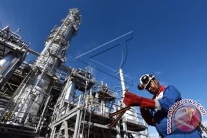 Apa Kata Ketua OPEC Soal Kar