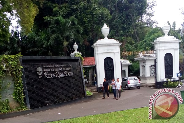 Kebun Raya Bogor bersiap sambut lebaran 2018