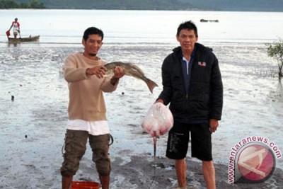 Presiden Jokowi Tinjau Pasar Ikan Di Bandarlampung