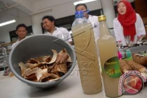 Gula Cair Kulit Singkong IPB Rambah Pasar