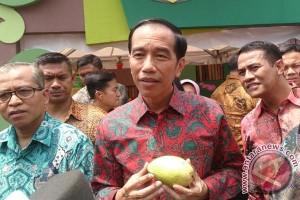 Presiden: Ekspor Buah Naikkan Pendapatan Petani