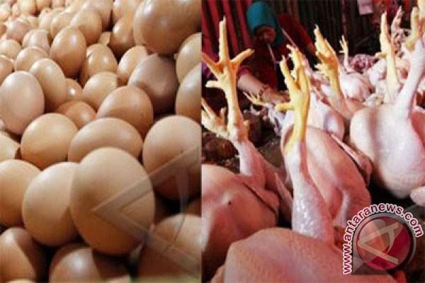 Harga telur di Kota Bogor naik