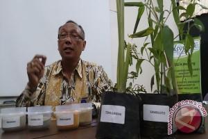 IPB Kembangkan Jamu Antiflu Burung