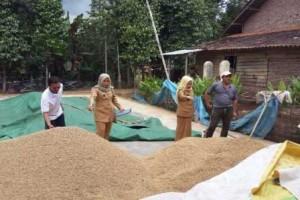 Lampung Surplus Bahan Pangan Hadapi Ramadhan