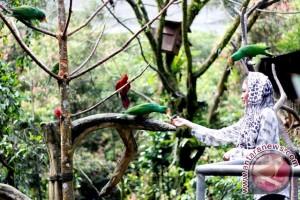 TSI Siapkan Taman Burung Sambut Libur Lebaran