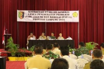Lampung Perkuat Pencapaian Swasembada Pangan