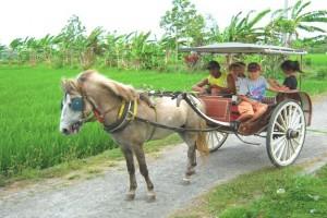 Ini Dia, Tiga Destinasi Wisata  Prioritas Sulteng Versi Pemerintah