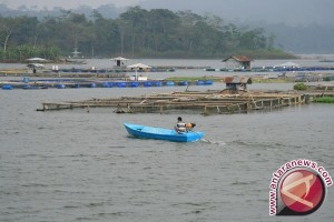 Antisipasi Banjir Keramba Ikan Di Sungai Sukabumi Dibongkar
