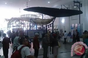 Museum Zoologi Simpan Tulang Paus 100 Tahun