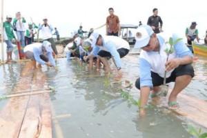 Gerakan Menanam Pohon Di Lampung