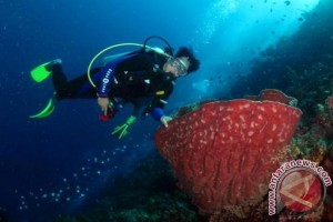 Memperkuat Indonesia Sebagai Bangsa Penyelam