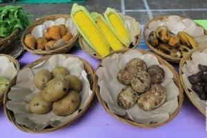 Pemkot Depok Dorong Warga Konsumsi Pangan Beragam