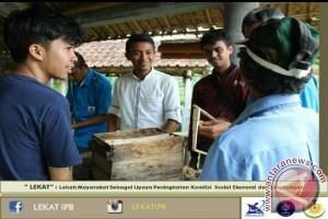 Mahasiswa IPB Gerakkan Masyarakat Budidaya Lebah