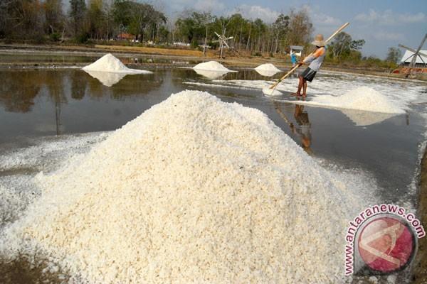 Produksi garam Karawang melimpah