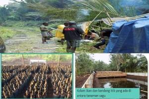 IPB Membangun Desa Sagu Di Kabupaten Meranti