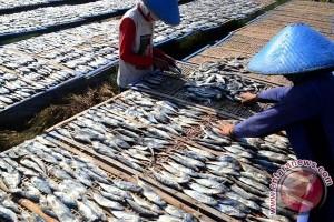 Pelaku Industri Ikan Asin Keluhkan Harga Garam