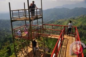 Homestay Desa Wisata Pentingsari Terapkan Standar Dunia