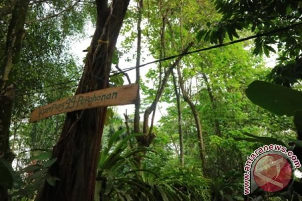 Kampung 99 Wisata Edukatif suasana Hutan Di Depok