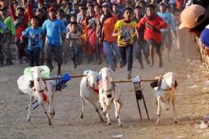 Semipro Diharapkan Dongkrak Wisata Budaya Probolinggo