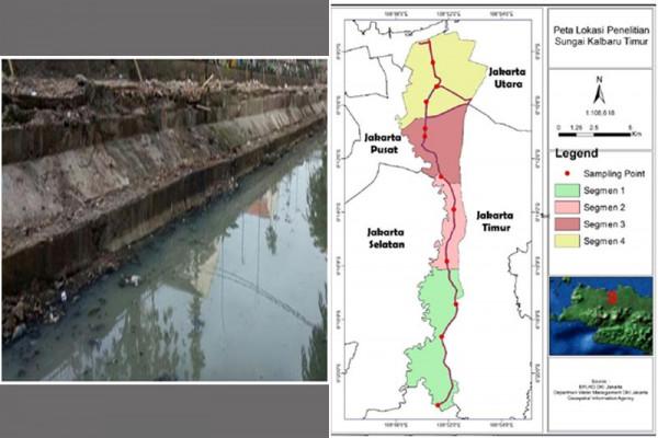 Peneliti IPB: Sungai Kalibaru Timur Tercemar Sedang Hingga Berat