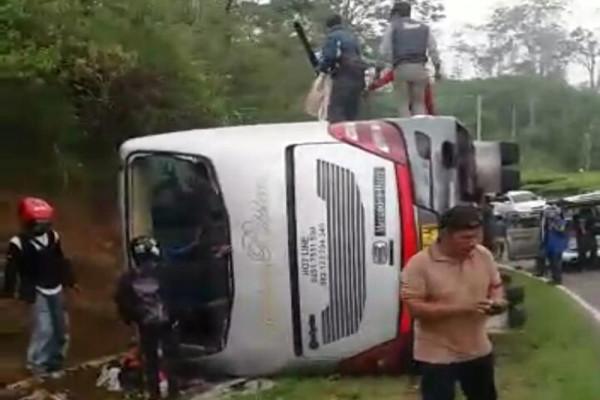 10 orang tewas akibat bus terjatuh dari jembatan di India