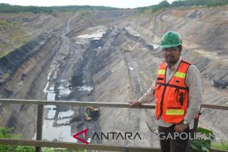 Dosen IPB sulap lahan bekas tambang jadi lahan produktif