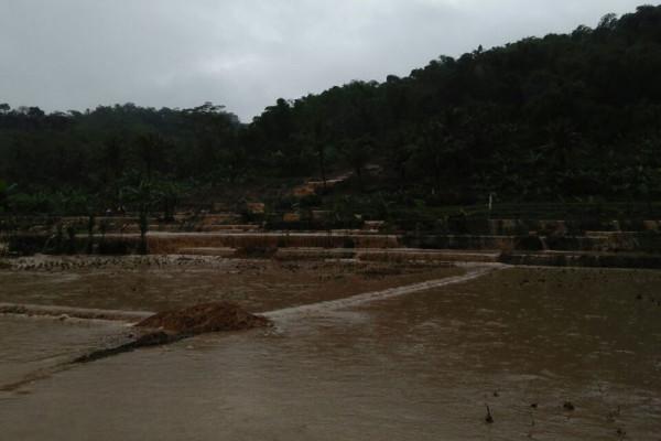 Banjir di Negeria 44 tewas, ini penyebabnya