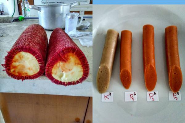 Peneliti IPB manfaatkan buah merah sebagai pewarna alami sosis