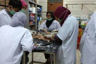 Bekasi libatkan dokter hewan IPB jelang Idul Adha