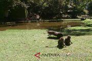 Pemkab Bogor diminta lakukan penataan wisata