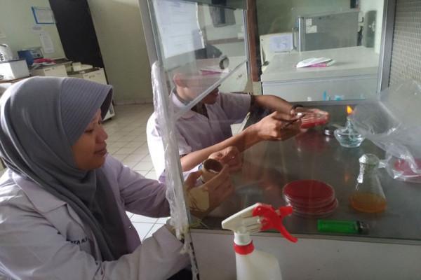 Mahasiswa IPB manfaatkan sabut kelapa untuk deteksi hematuria