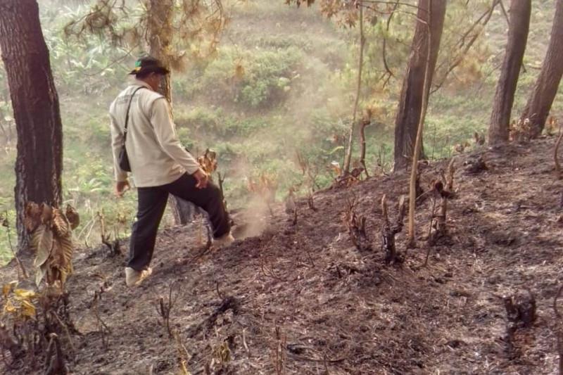 BPBD Sukabumi pastikan kebakaran Gunung Suta padam