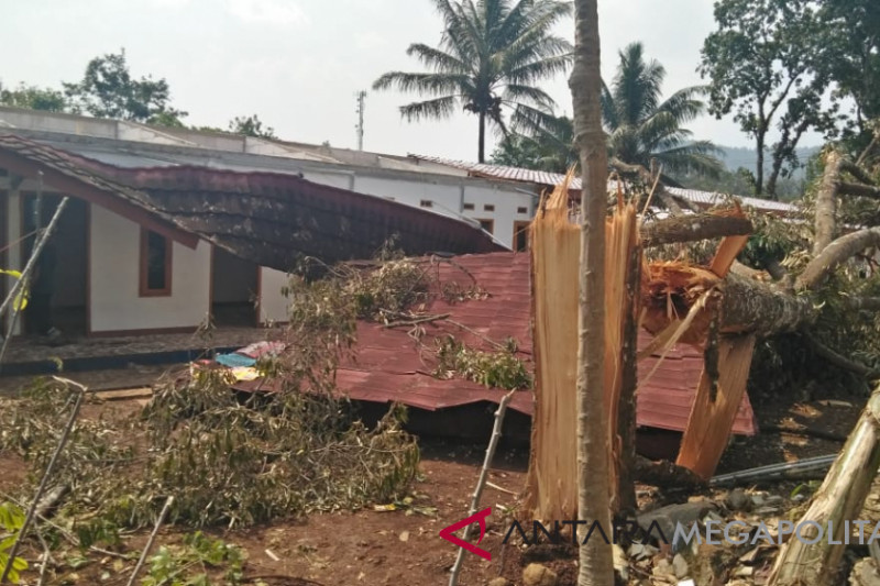 Lima kamar kos porak poranda tertimpa pohon