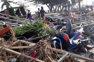 Citra satelit untuk cari titik terparah terdampak gempa di Palu