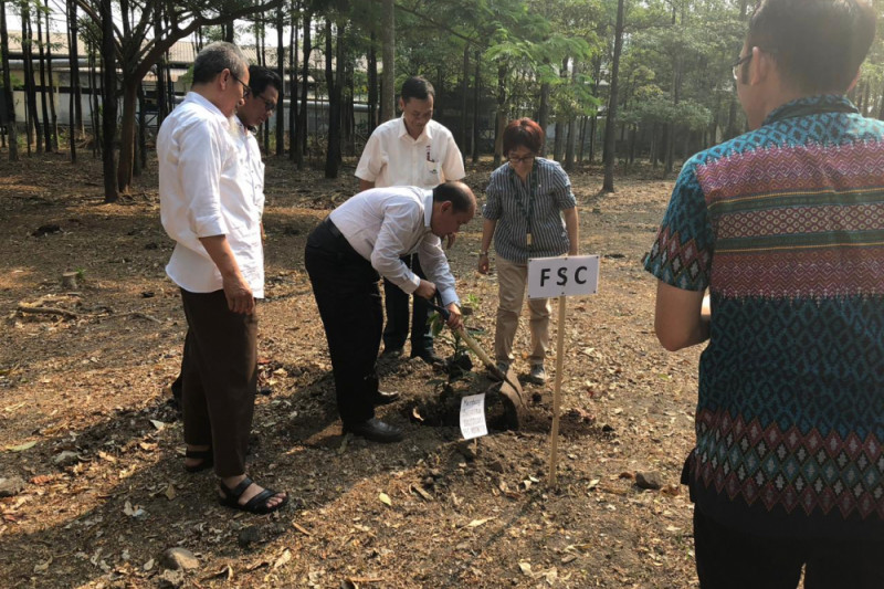 "Hutan berkelanjutan diharapkan jadi ""Top Mind"" Indonesia"
