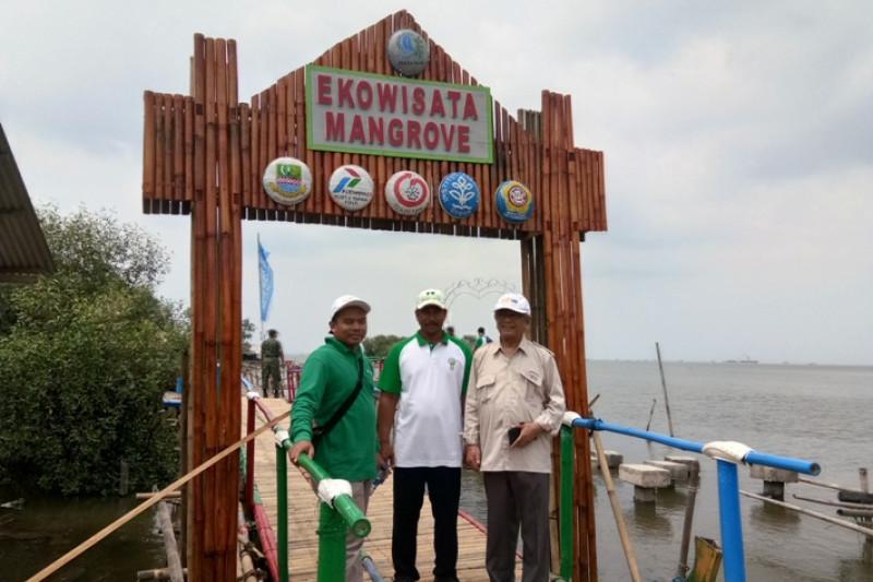 Sempat ditutup, ekowisata mangrove di Muaragembong Bekasi kini kembali dibuka