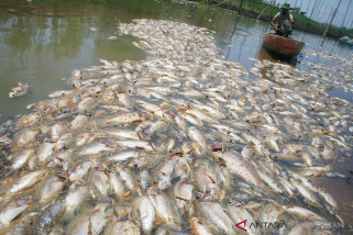 Petugas DLH Bekasi identifikasi pencemaran sungai Kalor