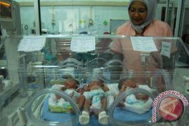 BPJS: bayi lahir sehat tidak harus gunakan JKN