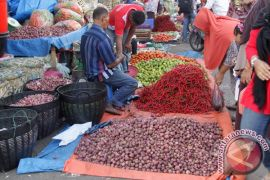 Harga sayur di Aceh barat turun