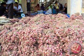 Pasar Lambaro serap 15 ton bawang